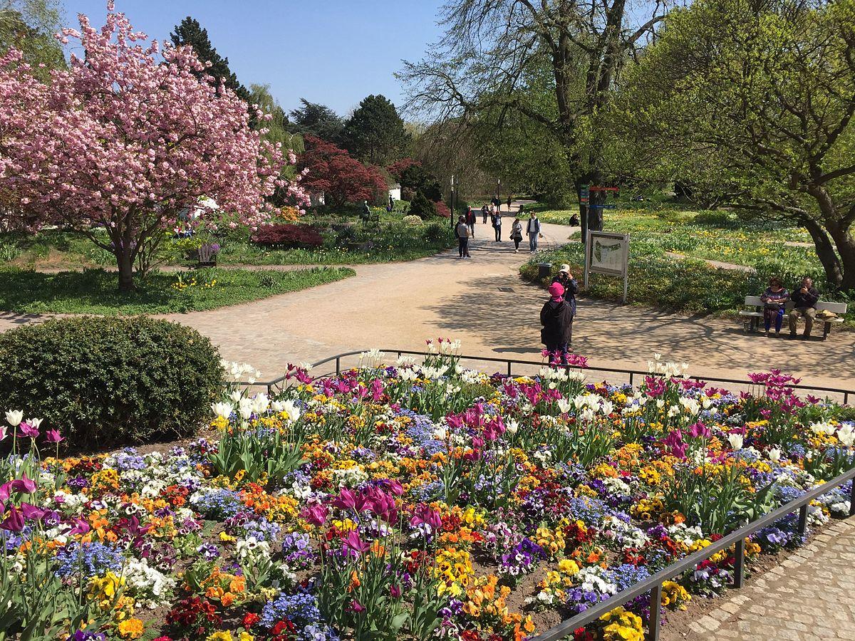 """Весна в парке """"Planten un Blomen"""""""