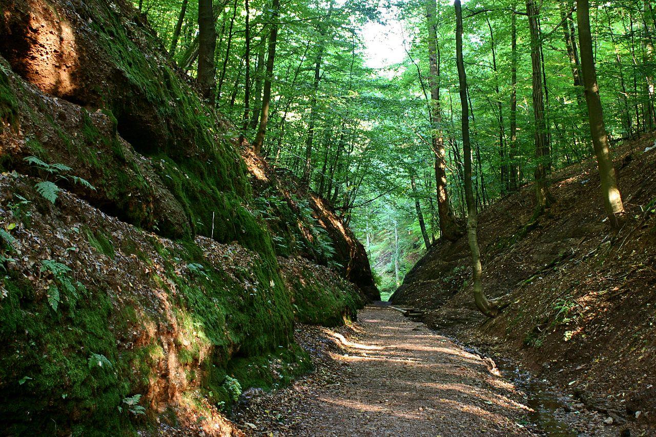 Тюрингский лес, Германия: прогулки по местности