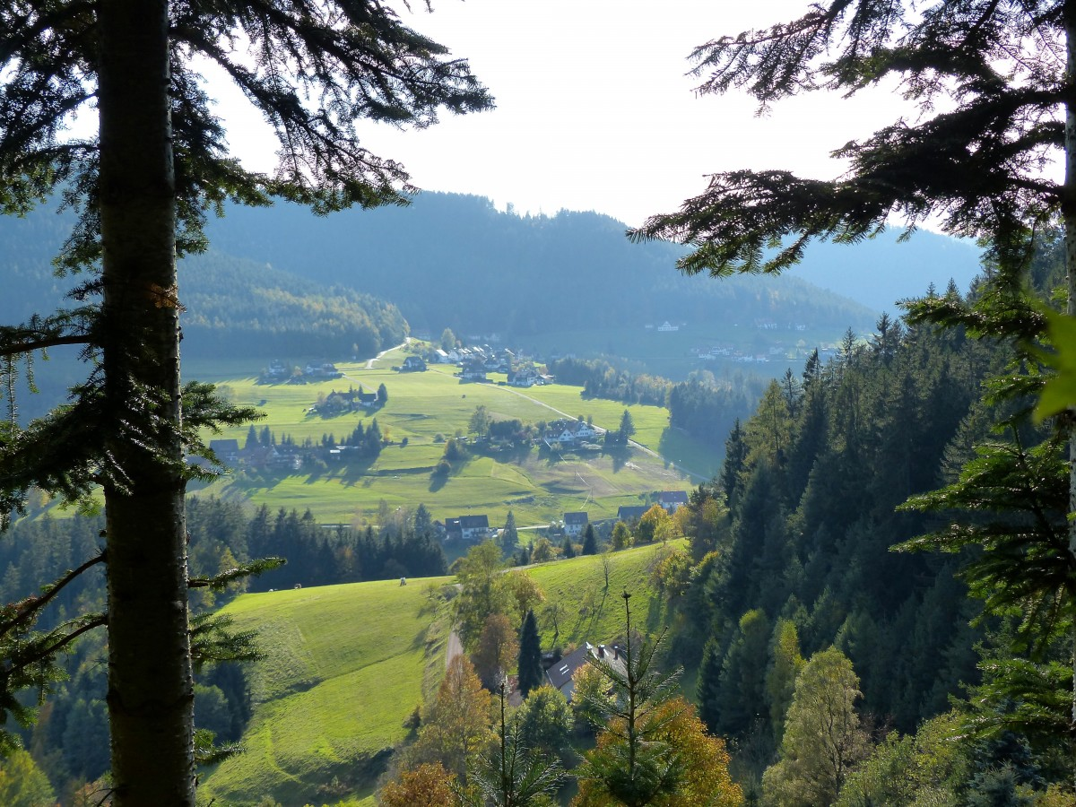 Шварцвальд, Германия: самые интересные достопримечательности, куда сходить, где вкусно пообедать, отзывы туристов